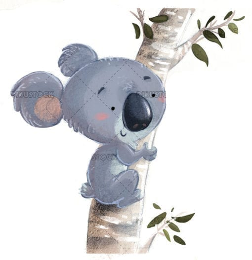 koala en un arbol con fondo blanco