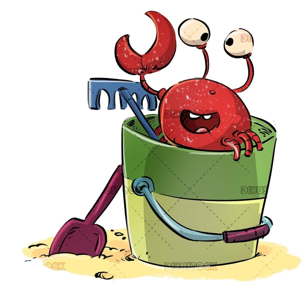 Crab on the beach inside a bucket