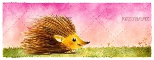 Hedgehog in the field on herbs