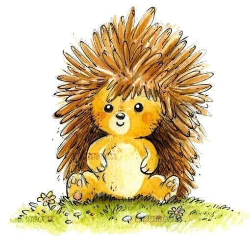 Hedgehog sitting in the field