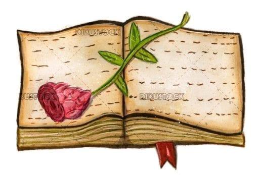 rosa libro estela