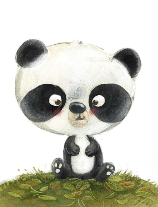 Baby panda bear with isolated background