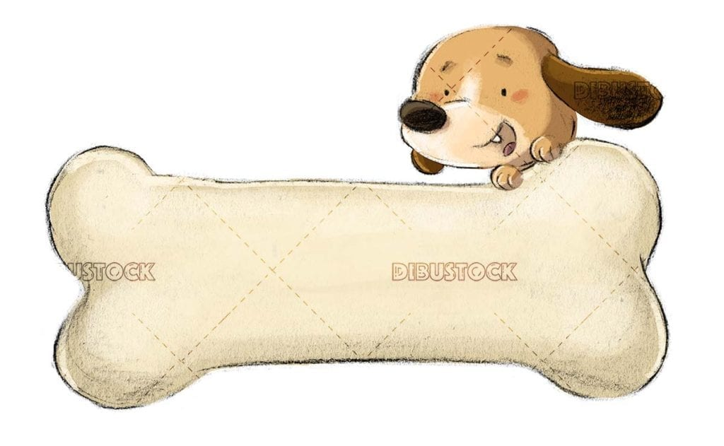 dog with huge bone and isolated background