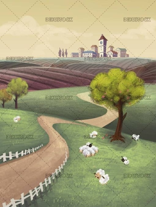 rural landscape with sown fields and sheep