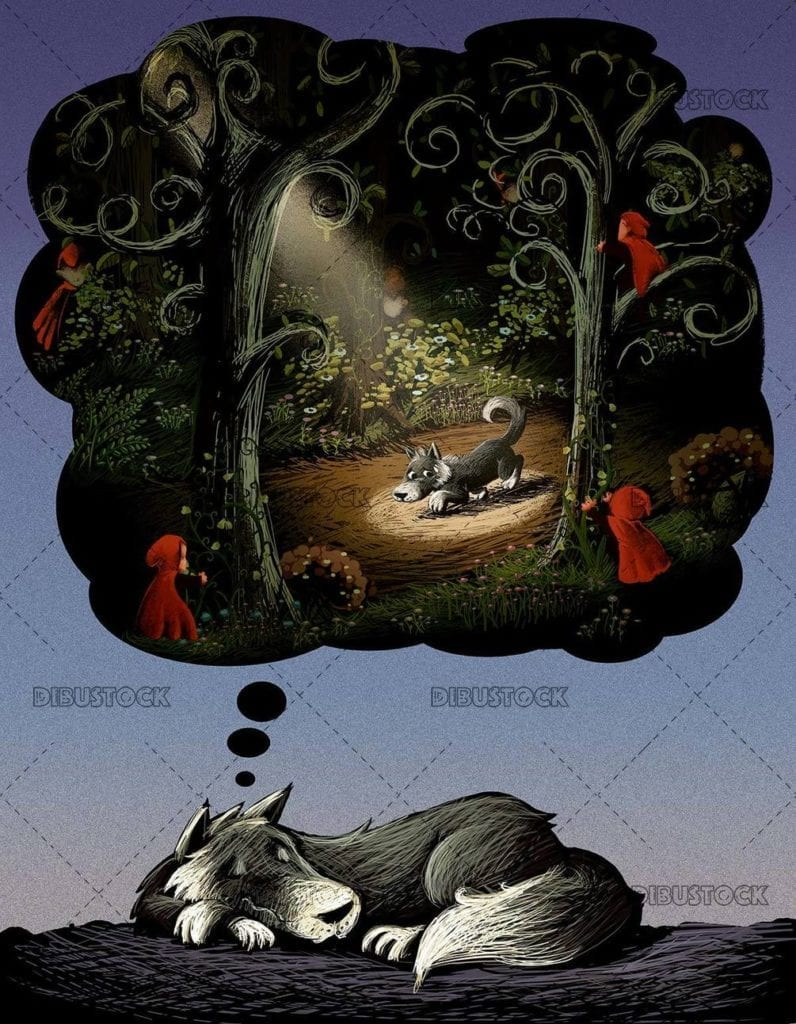 sleeping wolf dreaming of little red riding hood