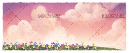 Field landscape with colorful flowers