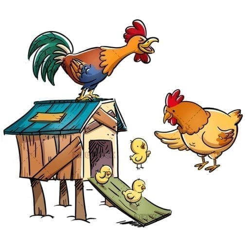 Family of chickens in a chicken coop