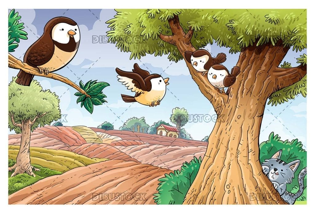 Sparrows in field