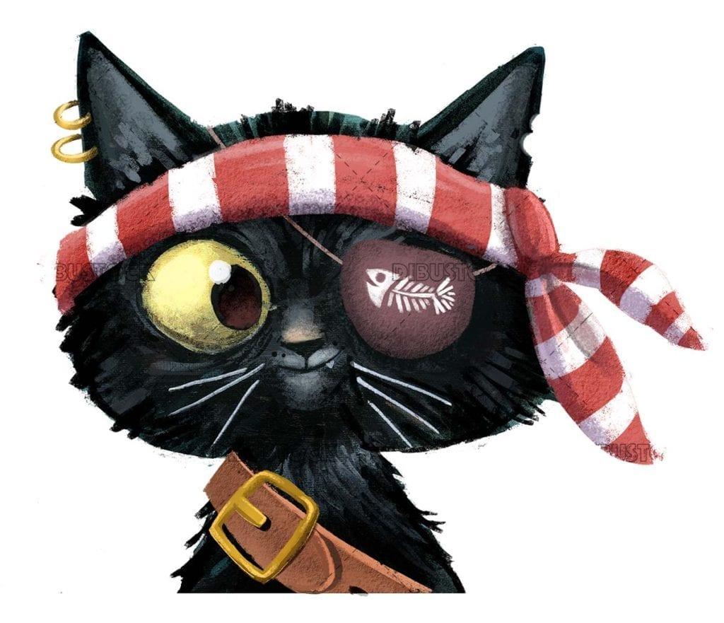 Pirate black cat