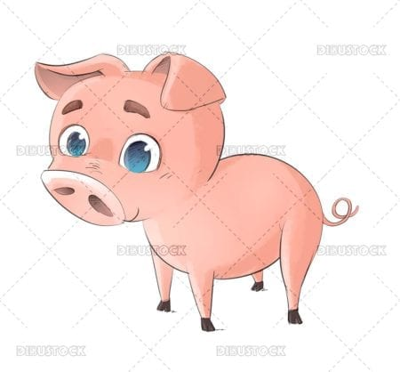 Funny pink pig