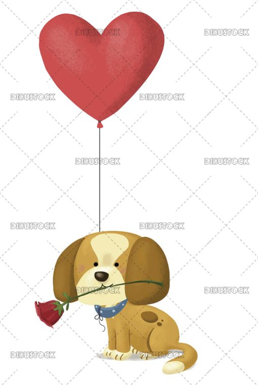 Dog with rose and heart balloon